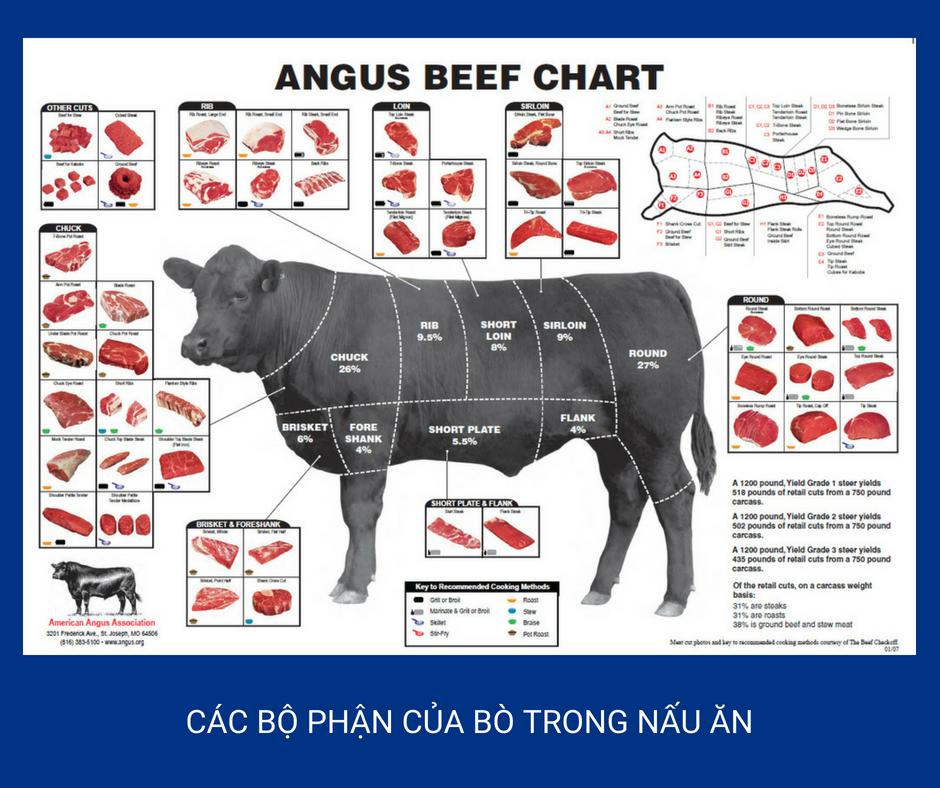 Minh hoạ: Các bộ phận của bò trong ẩm thực